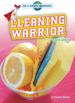 Cleaning Warrior