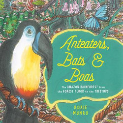 Anteaters, Bats and Boas