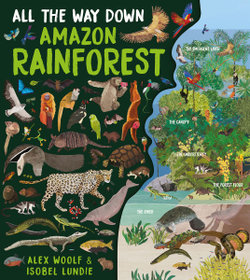 All the Way down: Amazon Rainforest