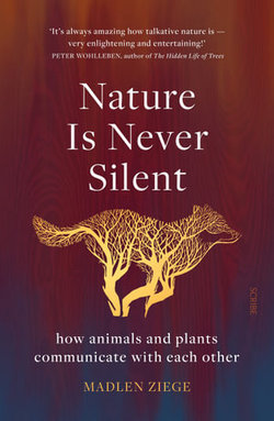 Nature Is Never Silent