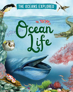 The Oceans Explored: Ocean Life