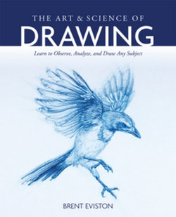 The Art and Science of Drawing