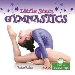 Little Stars Gymnastics