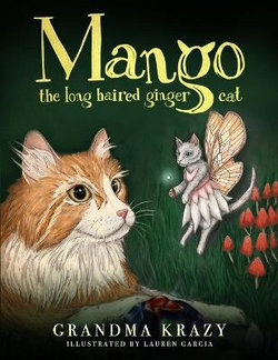 Mango the Long Haired Ginger Cat