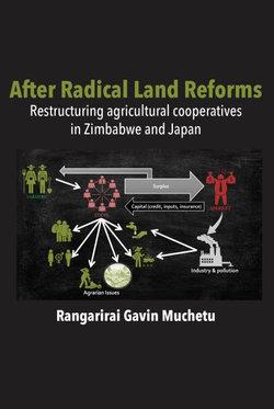 After Radical Land Reform
