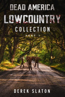 Dead America - Lowcountry Collection 1