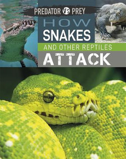 Predator vs Prey: How Snakes and Other Reptiles Attack!
