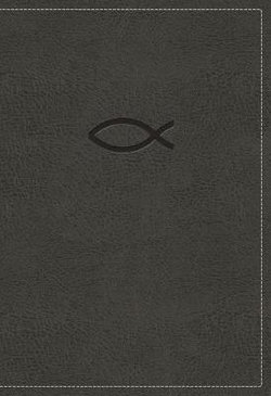 NKJV, Thinline Bible Youth Edition, Leathersoft, Gray, Red Letter, Comfort Print