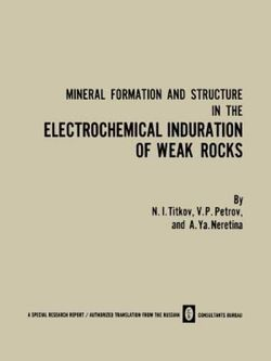 Mineral Formation and Structure in the Electrochemical Induration of Weak Rocks