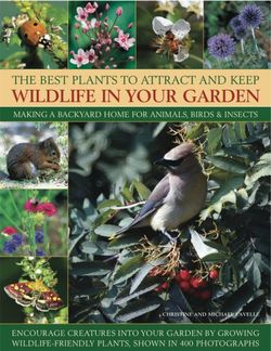 Best Plants to Attract and Keep Wildlife in the Garden