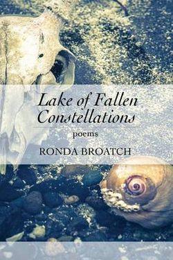 Lake of Fallen Constellations